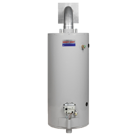 Direct Vent 40-Gallon 6-Year Short Gas Water Heater (Natural Gas)