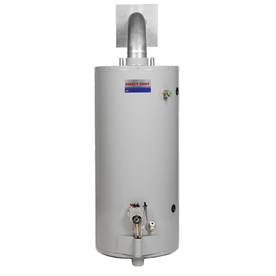 Direct Vent 50-Gallon 6-Year Tall Gas Water Heater (Natural Gas)