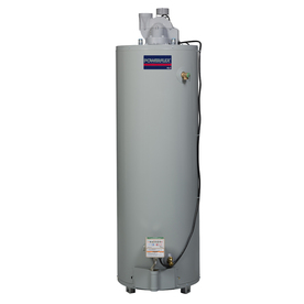 POWERFLEX DIRECT 40-Gallon 6-Year Residential Tall Natural Gas Water Heater