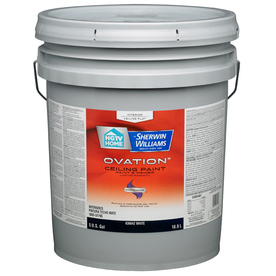 ... Flat Ceiling Tintable White Latex-Base Paint Paint and Primer In One