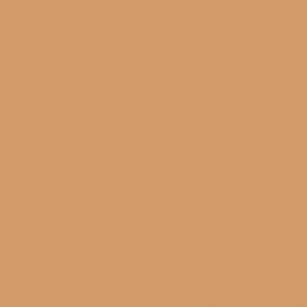 Shop hgtv home by sherwin williams elegant orange interior for Orange paint samples