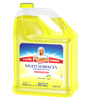Mr Clean Gallon Multi-Surface Liquid Cleaner