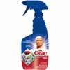 Mr Clean Outdoor Pro 22 oz Regular All-Purpose Cleaner