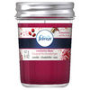 Febreze 5-oz Cranberry Cheer Thanksgiving Jar Candle