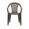 Adams Mfg Corp Earth Brown Resin Stackable Dining Chair