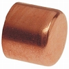1/2-in Copper Slip Cap Fitting