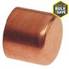 3/4-in Copper Slip Cap Fittings