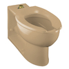 KOHLER Anglesey Mexican Sand Elongated Toilet Bowl
