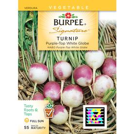 Burpee Turnip Vegetable Seed Packet