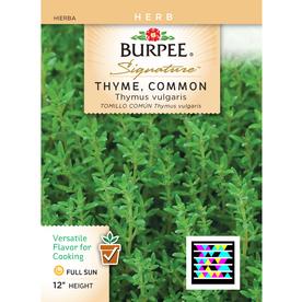 Burpee Thyme Herb Seed Packet