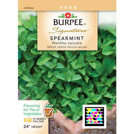 Burpee Spearmint Herb Seed Packet