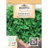 Burpee Mentha Spicata Spearmint Seed Packet