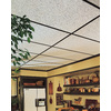 Armstrong Random Textured Contractor 10-Pack White Textured 15/16-in Drop Acoustic Panel Ceiling Tiles (Common: 48-in x 24-in; Actual: 47.719-in x 23.719-in)