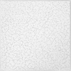 Armstrong Random Textured Contractor 16-Pack White Textured 15/16-in Drop Acoustic Panel Ceiling Tiles (Common: 24-in x 24-in; Actual: 23.532-in x 23.532-in)