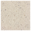 Armstrong 12-in x 12-in Coaster Greige Chip Pattern Commercial Vinyl Tile