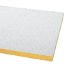 Armstrong 12-Pack 24-in x 48-in Painted Nubby Ceiling Tile Panel