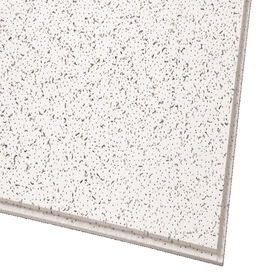 Shop Armstrong 10 Pack Ceiling Tiles Actual 47 704 In X