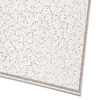Armstrong 12-Pack Ceiling Tiles (Actual: 23.75-in x 23.75-in)