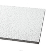 Armstrong 24-in x 60-in Fine Fissured Ceiling Tile Panel