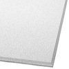Armstrong 48-in x 24-in Dune Second Look Ceiling Tile Panel