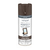 Valspar Project Perfect Labrador Brown Fade Resistant Spray Paint (Actual Net Contents: 12 Oz.)