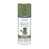 Valspar Project Perfect Leafy Rise Fade Resistant Enamel Spray Paint (Actual Net Contents: 12 Oz.)