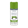 Valspar Project Perfect Tropical Foliage Fade Resistant Enamel Spray Paint (Actual Net Contents: 12 Oz.)