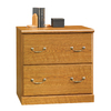 Sauder Orchard Hills Carolina Oak 2-Drawer File Cabinet