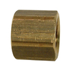 Watts 3/8-in Cap Brass Pipe Fitting