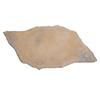Sandy Creek Sereno Concrete Patio Stone (Common: 31-in x 16-in; Actual: 31-in x 16-in)