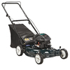 Bolens 5.5 ft-lbs 21-in Gas Push Lawn Mower