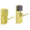 Schlage LiNK Bright Brass Residential Electronic Door Lever