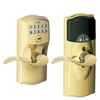 Schlage Camelot Bright Brass Universal Electronic Entry Door Lever (Works with Iris)