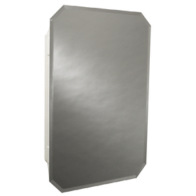 Zenith 16-in x 24-in Surface/Recessed Medicine Cabinet