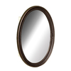 allen + roth 20.63-in x 30.63-in Oval Surface Mirrored Steel Medicine Cabinet