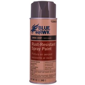 Blue Hawk 12-oz Gray Spray Paint