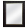 MCS Industries 29.75-in x 35.88-in Bronze with Silver Rectangular Framed Mirror