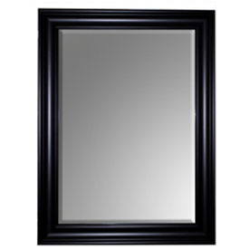 Style Selections Espresso Rectangle Framed Wall Mirror