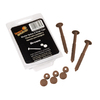 Severe Weather 12-Pack Exterior Shutter Spike and Hinge Cap Set