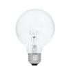 2-Pack 60-Watt Medium Base (E-26) Soft White Dimmable Decorative Incandescent Light Bulbs
