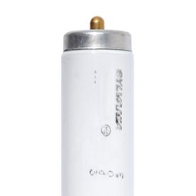 SYLVANIA 15-Pack 75-Watt 6,500K Daylight Fluorescent Tube Light Bulbs (Common: 96-in; Actual: 94.00-in)