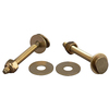 Plumb Pak 2-1/4-in L Snap-Off Floor Bolts