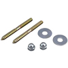 Plumb Pak 2-1/2-in L Polished Brass Floor Screws