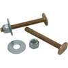 Plumb Pak 2-1/4-in L Floor Bolts