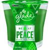Glade 3.8-oz Spruce Christmas Jar Candle