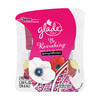 Glade 2-Pack 1.34-oz Be Ravishing Electric Air Freshener Refill