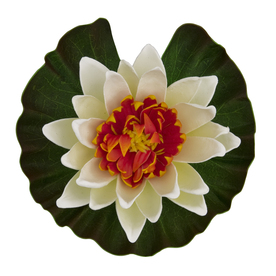 Tetra Floating Water Lily