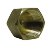 Watts 1/2-in Brass Pipe Fitting