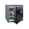 SentrySafe 1.23 Cu. Ft. Electronic Fire Safe
