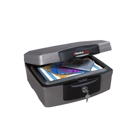 SentrySafe 0.2-cu ft Waterproof Chest Safe